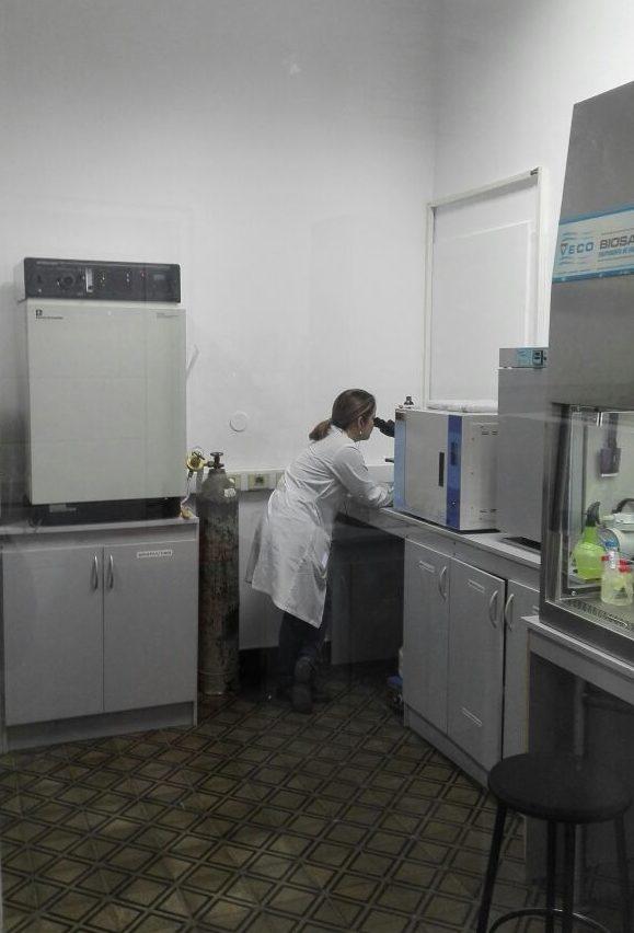 ciencia paraguaya más productiva