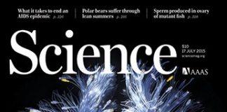 error articulo cientifico